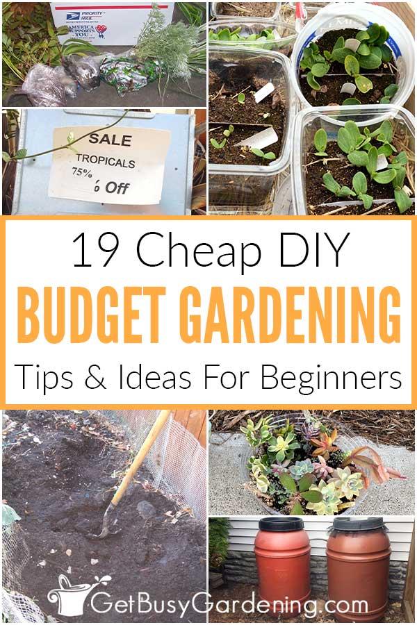 19 Cheap DIY Budget Gardening Tips & Ideas For Beginners