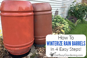 Winterizing A Rain Barrel In 4 Easy Steps