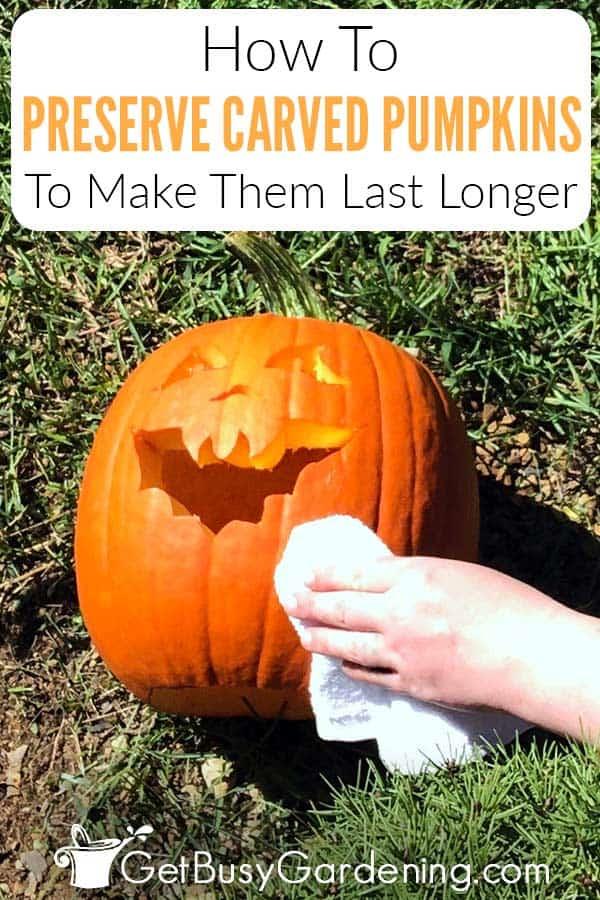 How To Preserve Carved Pumpkins To Make Them Last Longer